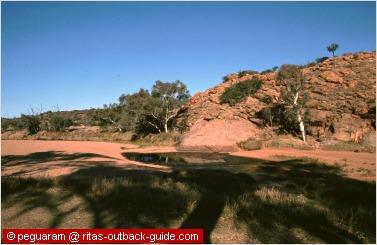 todd river waterhole