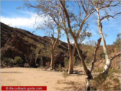 arkaroola photos