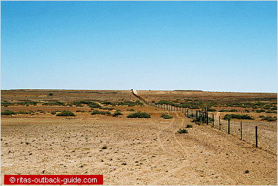 dog fence in the outback