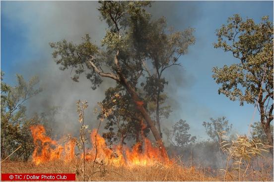 bushfire in australia