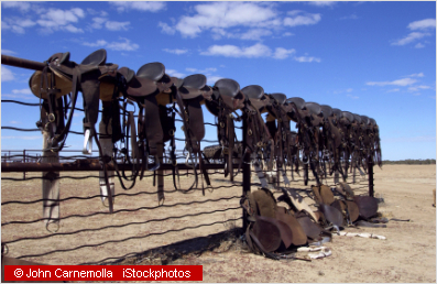 saddles lined up on a fence