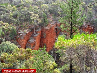 The red sandstone walls of Alligator gorge