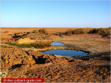 waterhole in a barren outback landscape