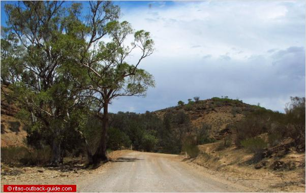 winding road in the flinders ranges
