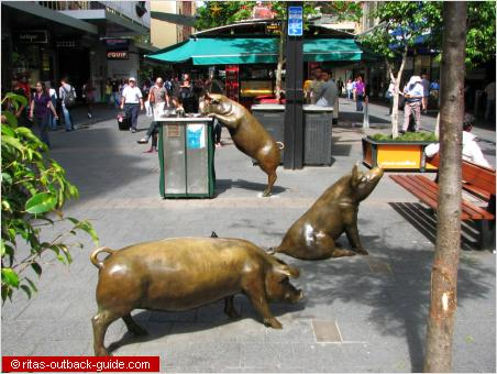 bronze pigs