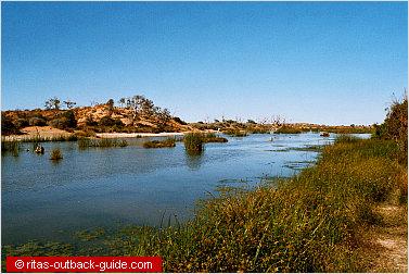 mungerannie wetlands