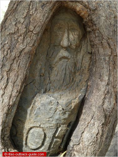 a face carved into a tree
