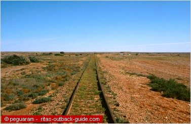 rail tracks leading into the desert