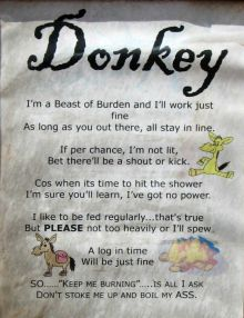 explanation of a donkey