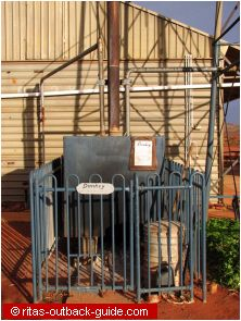 The donkey provides the hot water at Mt. Ive
