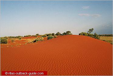 sandhills and grassland