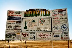 Go and explore the town Birdsville