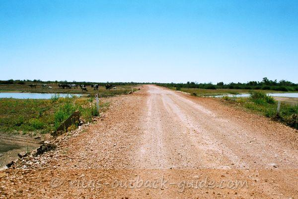 The road crosses Eyre Creek