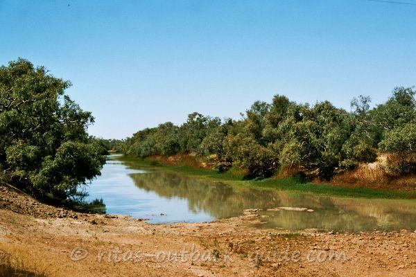 Lush green scenery along King Creek
