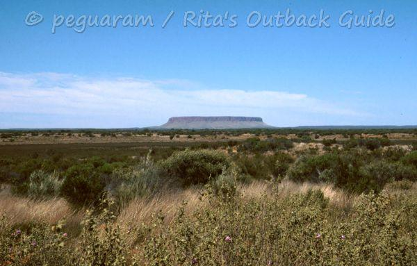 Bushland with a table mountain in the distance