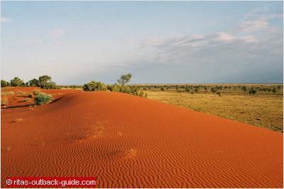 Sand dunes outside Windorah