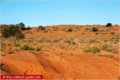 Sand dunes near Bedourie