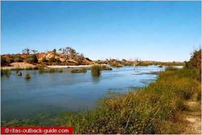 Mungerannie wetlands, Birdsville Track