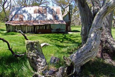 Wallace Hut 1889